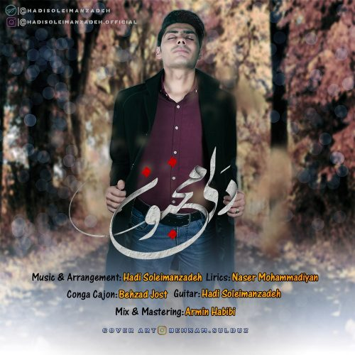 Hadi Soleimanzadeh - Dali Majnoon