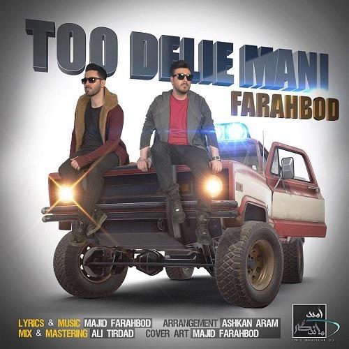 تک ترانه - دانلود آهنگ جديد Farahbod-Too-Delie-Mani آهنگ جدید مجید فرهبد به نام تو دلی منی