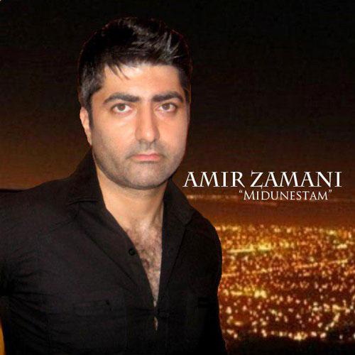 تک ترانه - دانلود آهنگ جديد Amir-Zamani-Midunestam دانلود آهنگ امیر زمانی به نام میدونستم