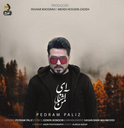 تک ترانه - دانلود آهنگ جديد Pedram-Paliz-Ey-Ashnaye-Man دانلود آهنگ پدرام پالیز به نام ای آشنای من