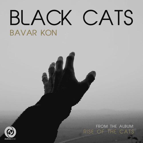 تک ترانه - دانلود آهنگ جديد Black-Cats-Bavar-Kon دانلود آهنگ بلک کتس به نام باور کن