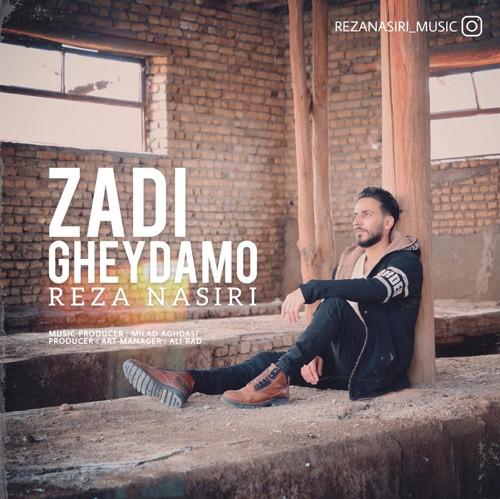 تک ترانه - دانلود آهنگ جديد Reza-Nasiri-Zadi-Gheydamo دانلود آهنگ رضا نصیری به نام زدی قیدمو
