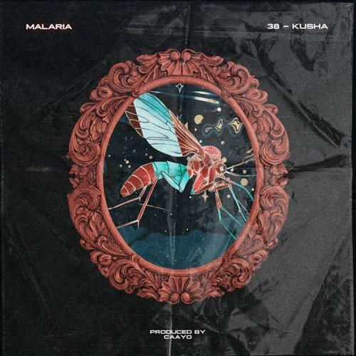 تک ترانه - دانلود آهنگ جديد 38-Kusha-Malaria دانلود آهنگ سی و هشت و کوشا به نام مالاریا