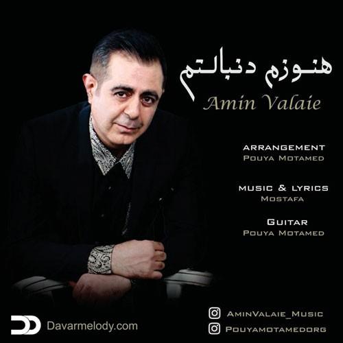 تک ترانه - دانلود آهنگ جديد Amin-Valaie-Hanozam-Donbaletam دانلود آهنگ امین والائی به نام هنوزم دنبالتم