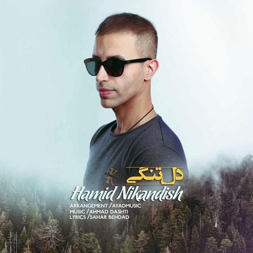 تک ترانه - دانلود آهنگ جديد Hamid-Nikandish-Deltangi دانلود آهنگ حمید نیک اندیش به نام دلتنگی