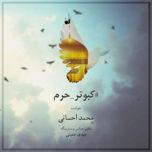 تک ترانه - دانلود آهنگ جديد Mohammad-Ehsani-Kabootare-Haram دانلود آهنگ محمد احسانی به نام کبوتر حرم