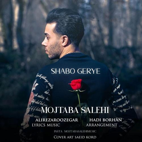 تک ترانه - دانلود آهنگ جديد Mojtaba-Salehi-Shabo-Gerye دانلود آهنگ مجتبی صالحی به نام شب و گریه