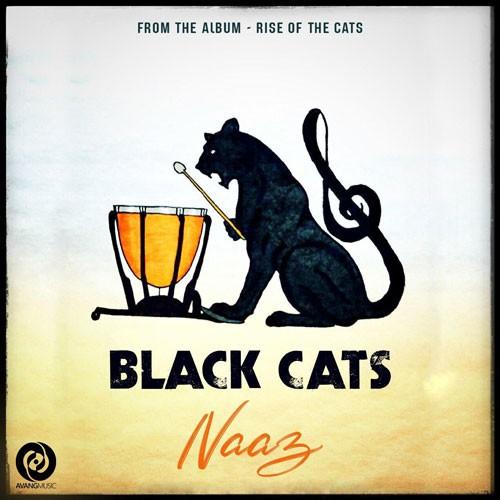 تک ترانه - دانلود آهنگ جديد Black-Cats-Naaz دانلود آهنگ بلک کتس به نام ناز