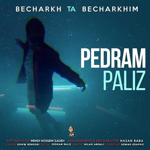 تک ترانه - دانلود آهنگ جديد Pedram-Paliz-Becharkh-Ta-Becharkhim دانلود آهنگ پدرام پالیز به نام بچرخ تا بچرخیم