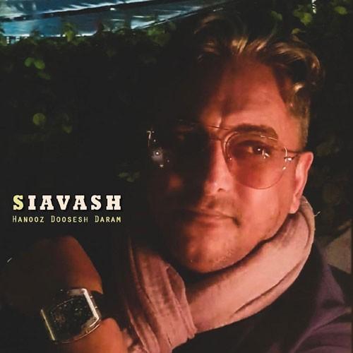 تک ترانه - دانلود آهنگ جديد Siavash-Shams-Hanooz-Dosesh-Daram دانلود آهنگ سیاوش شمس به نام هنوز دوسش دارم