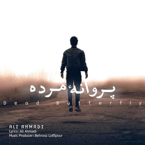 تک ترانه - دانلود آهنگ جديد Ali-Ahmadi-Parvaneye-Morde دانلود آهنگ علی احمدی به نام پروانه ی مرده