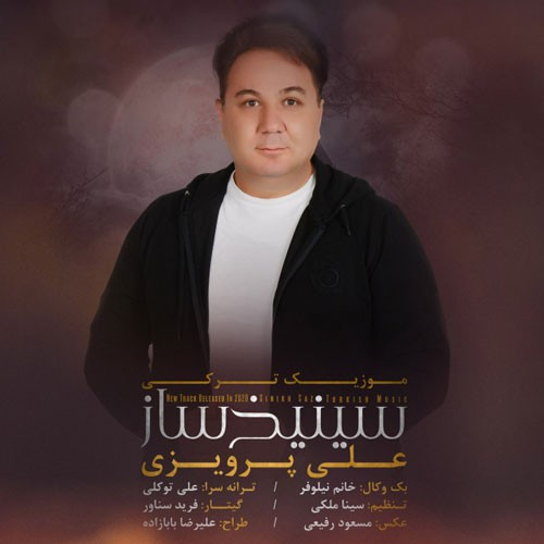 تک ترانه - دانلود آهنگ جديد Ali-Parvizi-Sinikhsaz دانلود آهنگ علی پرویزی به نام سینیخ ساز