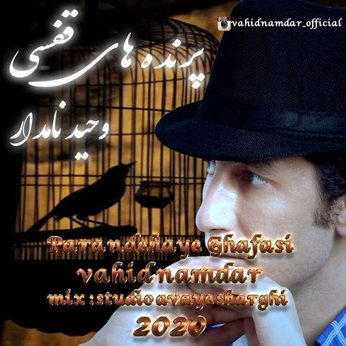 تک ترانه - دانلود آهنگ جديد Vahid-Namdar-Parandehaye-Ghafasi دانلود آهنگ وحید نامدار به نام پرنده های قفسی