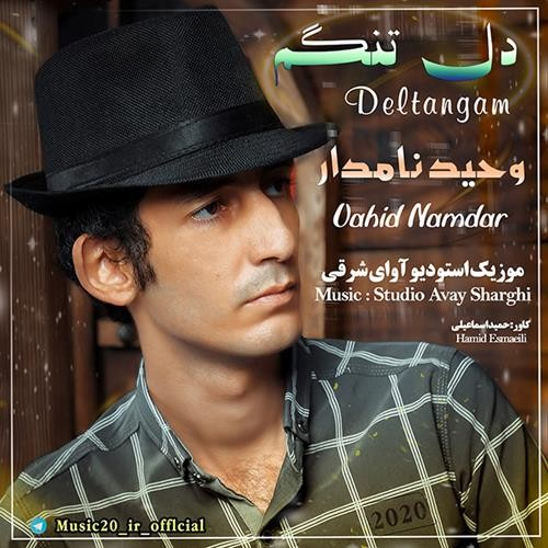 تک ترانه - دانلود آهنگ جديد Vahid-Namdar-Deltangam دانلود آهنگ وحید نامدار به نام دلتنگم